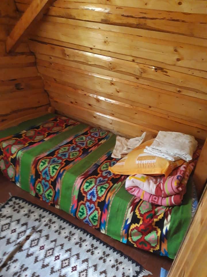 Camera in cabana la munte