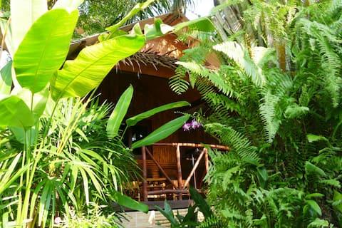 Thai Tropical Bungalow