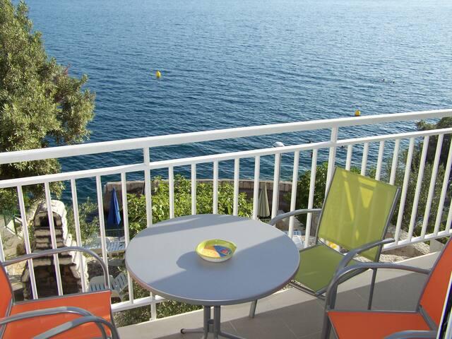 B1 terrace stunning sea view, garden with sunbeds