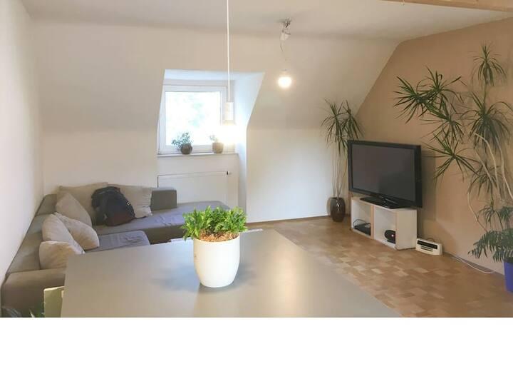 2-Zimmer-Apartment 50qm Super zentral