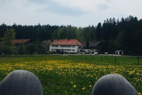 Charmante 85qm Wohnung/Bauernhof/Bayerischer Wald
