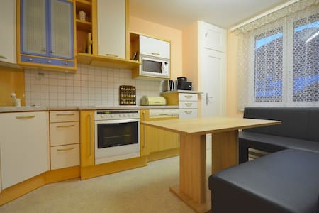 Spacious 2 bedroom appt Zell-am-See - Zell am See - Apartment - 2
