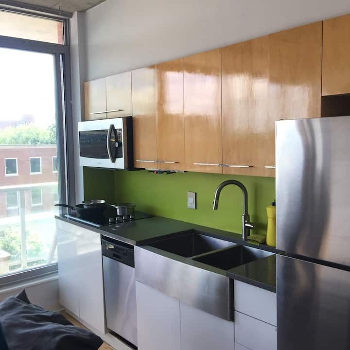 Downtown Condo in the ByWard Market