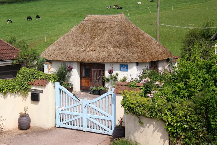 The Nest, seaside thatched cottage, Devon.