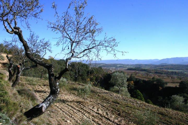 Zona de acampada en el Matero - Secastilla - Namiot