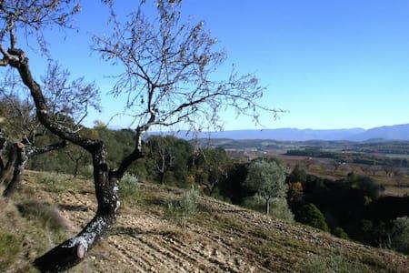 Zona de acampada en el Matero - Secastilla