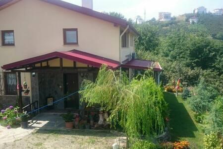 Modern & grate nature villa - Yeşiltepe Köyü