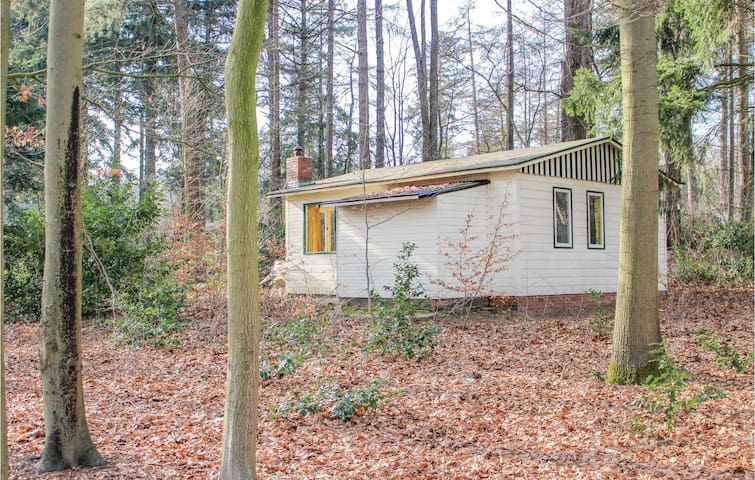 Holiday cottage with 2 bedrooms on 30m² in Oudemirdum