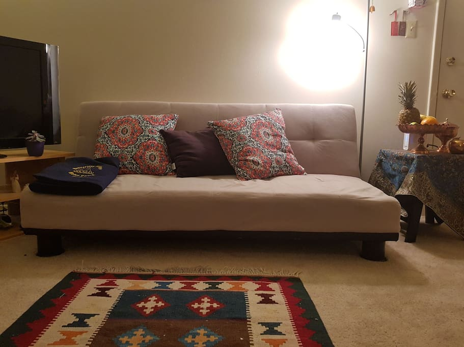 Our two-person sleeper sofa with bunch of cushions and persian carpet