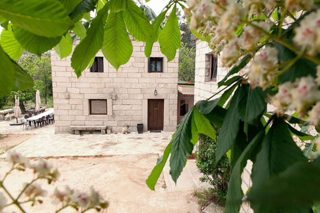 Casa Grande: aquí se encuentra la habitación Mirada al Bosque