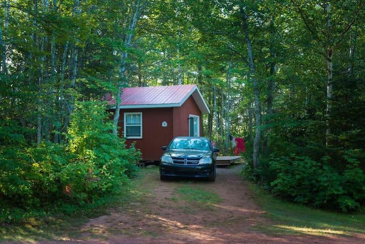 Cozy Camp Cabin 10