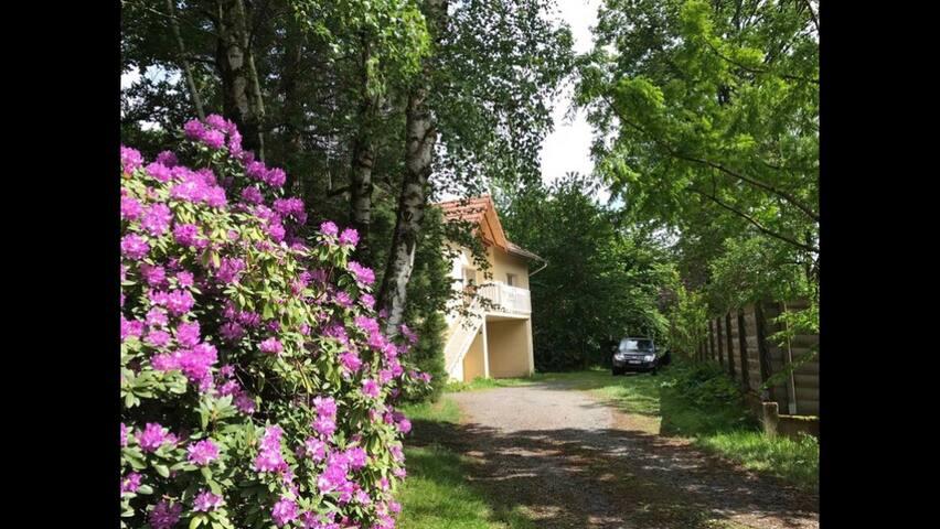 SAINT DIÉ maison entière arbres sur  terrain clos