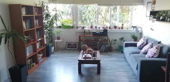 Habitación cómoda e iluminada