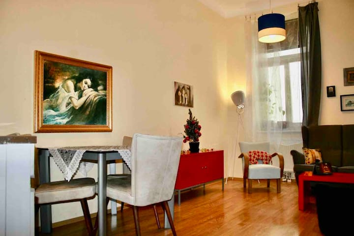Cosy Apartment close to the city centre