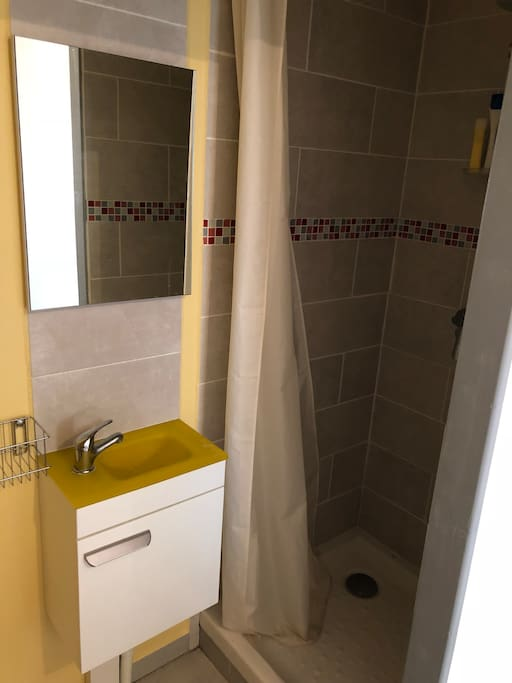 Douche sur la droite, petit lavabo, et wc à gauche