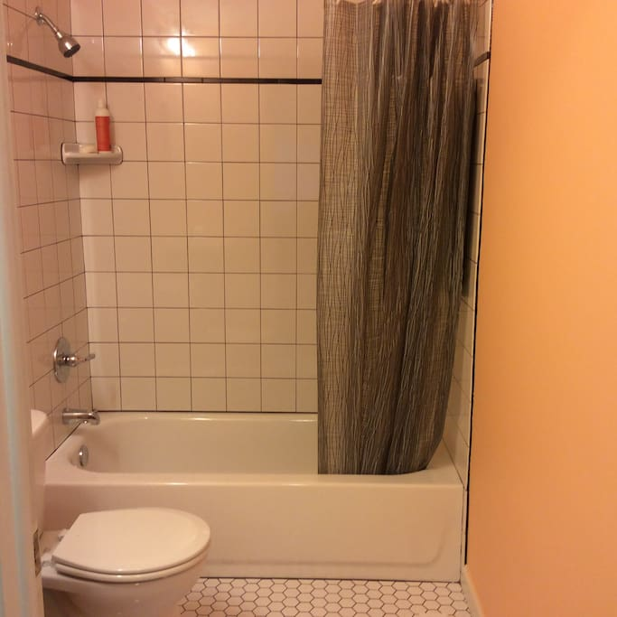 Newly renovated, shared bathroom. Shampoo and soap included so you don't have to bring your own.