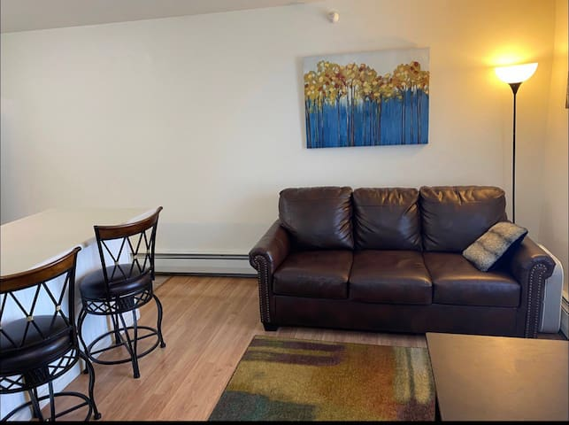 Bike to Downtown! Bright Apt #3 Ready for Summer!