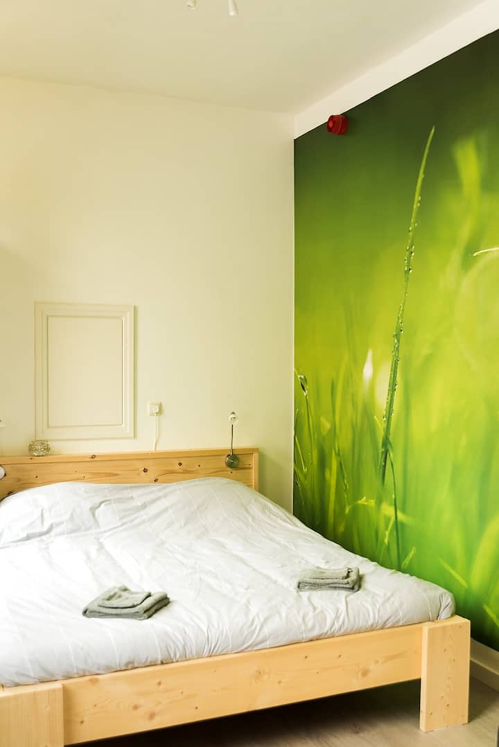 Comfortable and modern room, to the city center