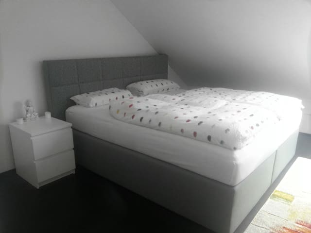 Frankfurt Airport Room - modern and central- - Kelsterbach - Ev