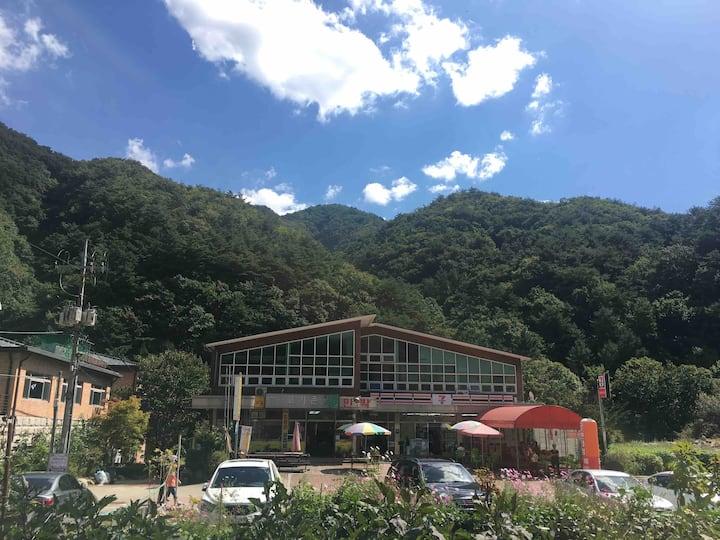 (특2)치악산등반-구룡사코스/오크밸리/Mt.Chiak/雉岳山国立公園