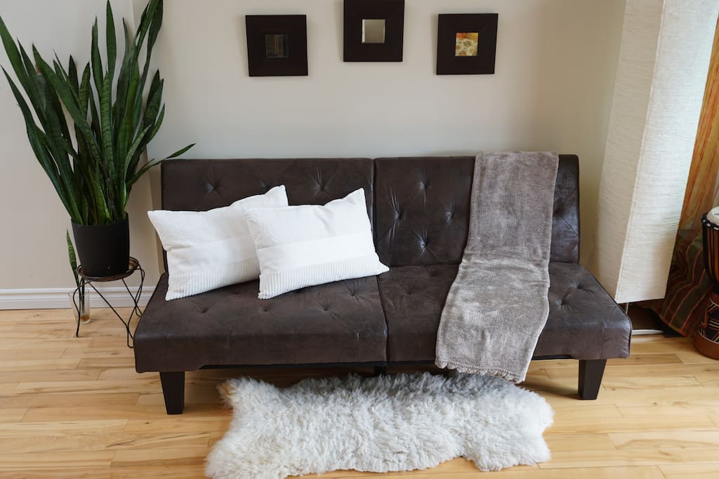 Sofa bed (living room)