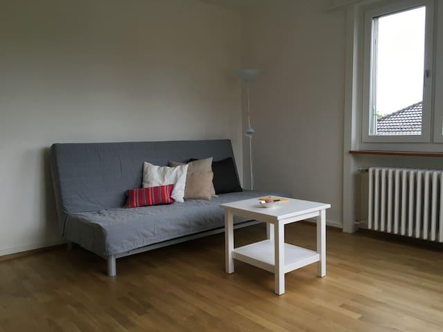 Ruhiges, helles Zimmer mit guter Anbindung zu ÖV - Zürich - Apartment
