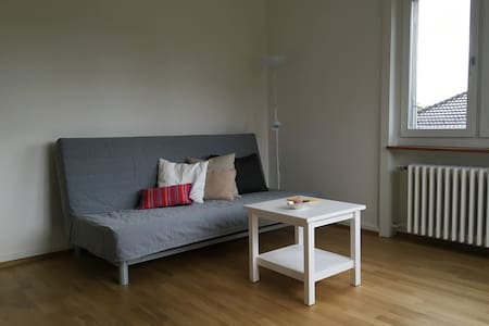 Ruhiges, helles Zimmer mit guter Anbindung zu ÖV - Zürich - Apartmen