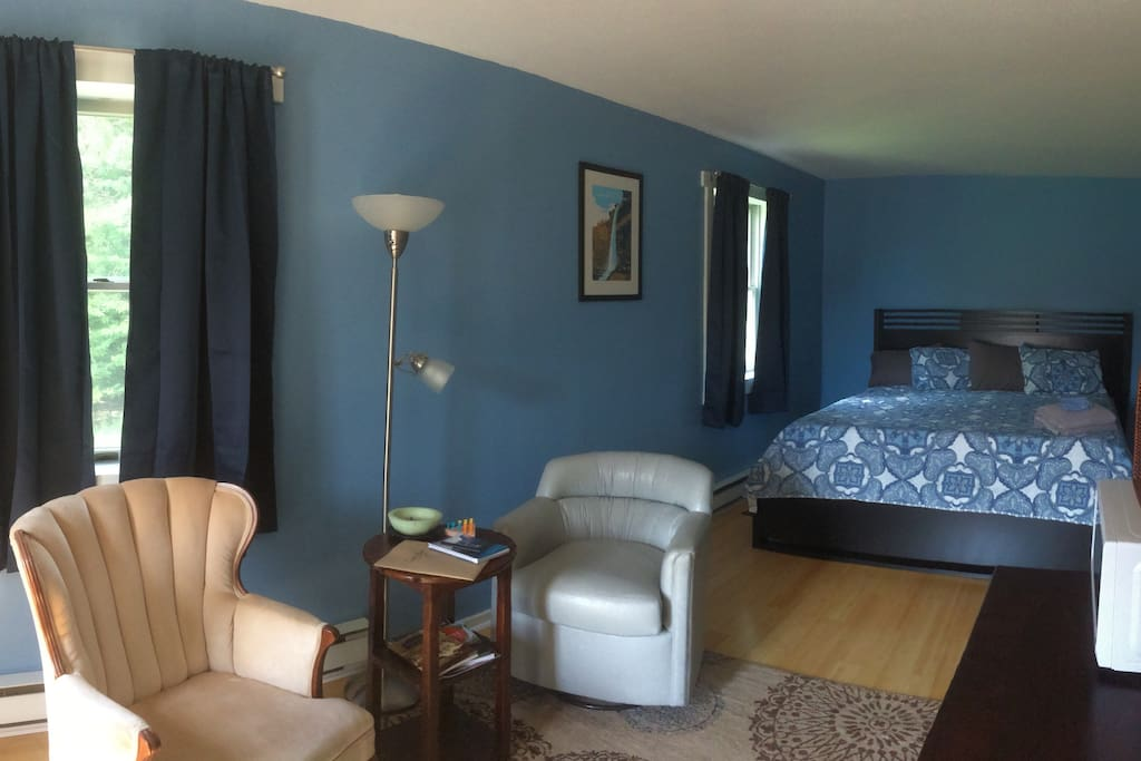 Large open room with sitting area, kitchenette, and king size bed