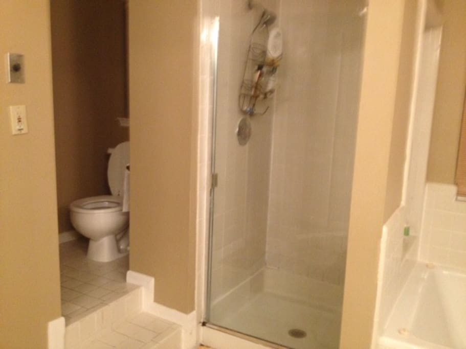 Toilet  and shower within private bathroom