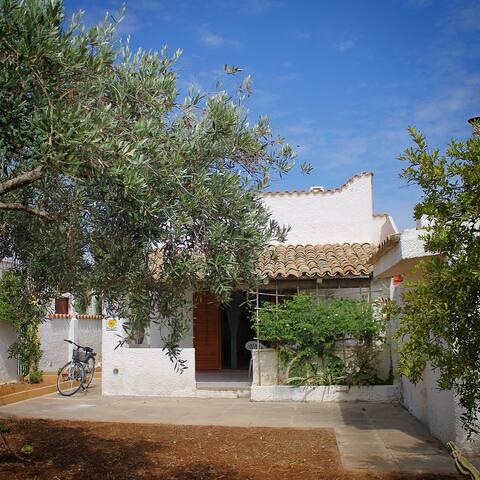 Villa con giardino - Tre Fontane