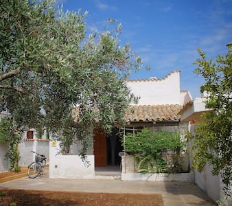 Villa con giardino - Tre Fontane - Villa