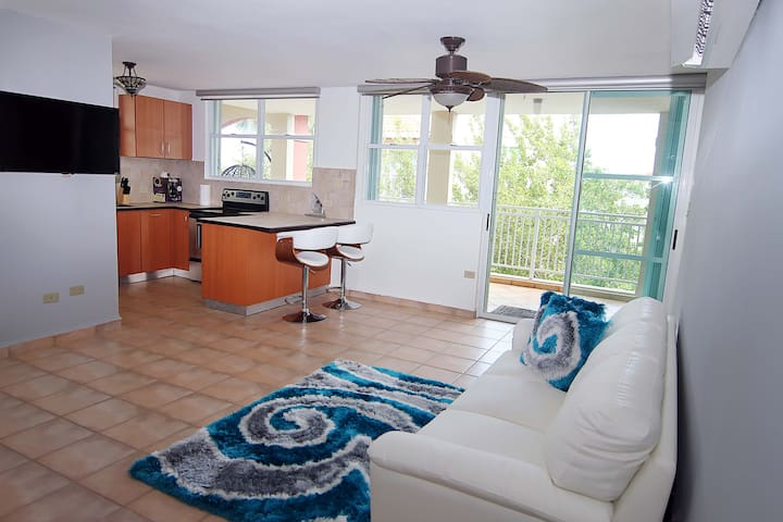 #4 Beachfront Penthouse: 3BR, 2BA - Montones Beach - Isabela - Appartamento