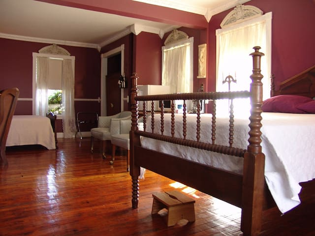 Olympus Room - Leechburg - Bed & Breakfast