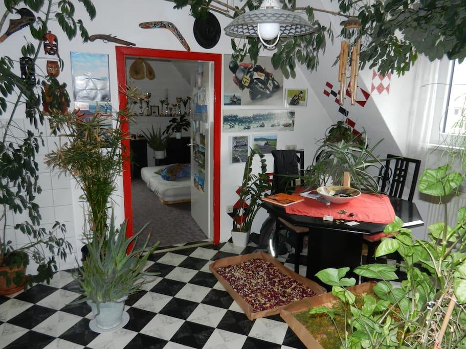 Küche + Wohnraum