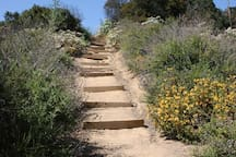 Franklin Canyon Park has several scenic hiking trails and is 0.6 miles away.