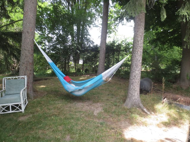 Hammock or Pitch Your Own Tent