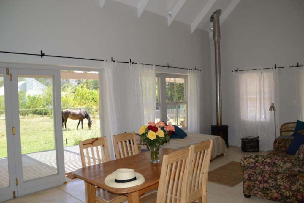 View to garden with visiting Pony