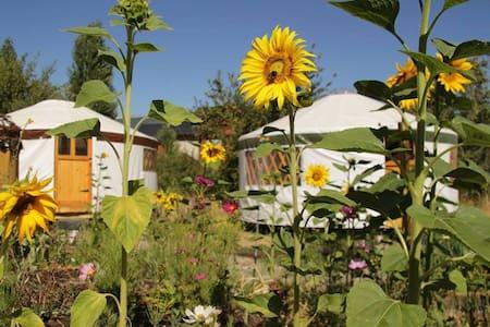 Eco Yurt: Earthship Patagonia Cozy Holistic Space - El Bolsón - กระโจมทรงกลม