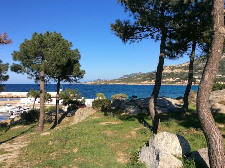 A proximité de la plage Sant Ambroggio en Balagne