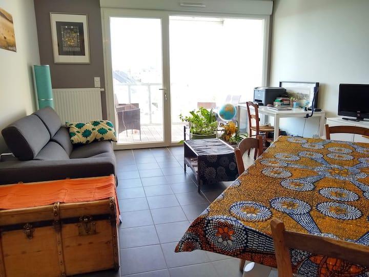 Cosy appartement 50m2 centre-ville Rodez/Bourran
