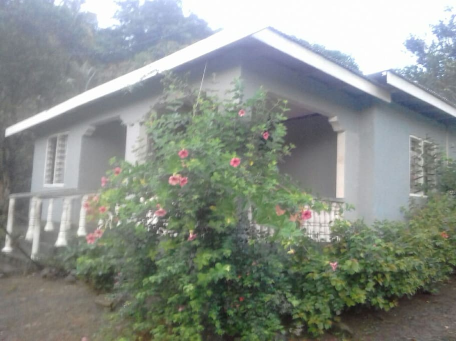 Front of  homestay