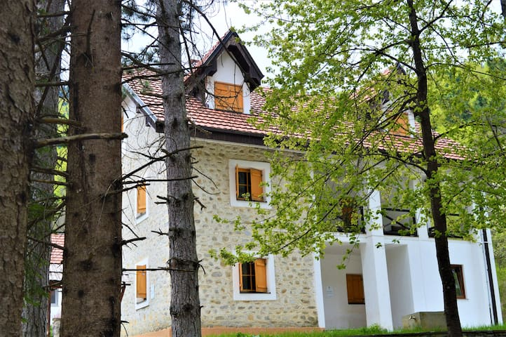 Superior mountain apartment, Complex Korab Trnica