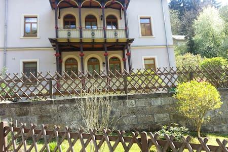 Geräumige Ferienwohnung mit Balkon - Bad Schandau - Wohnung