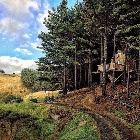 Raglan Treehouse in the Woods - Raglan - Treehouse