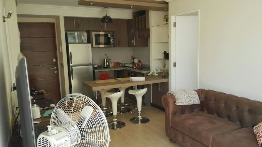 New Room with Private Bath in Downtown Area - Santiago - Apartamento