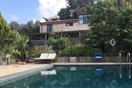 Villa Muranco, Naturstein-Villa im Olivenhain