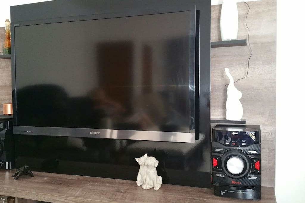 """Flat Screen Sony TV 48"""". Bring your Chromecast to watch YouTube and connect to your Netflix account."""