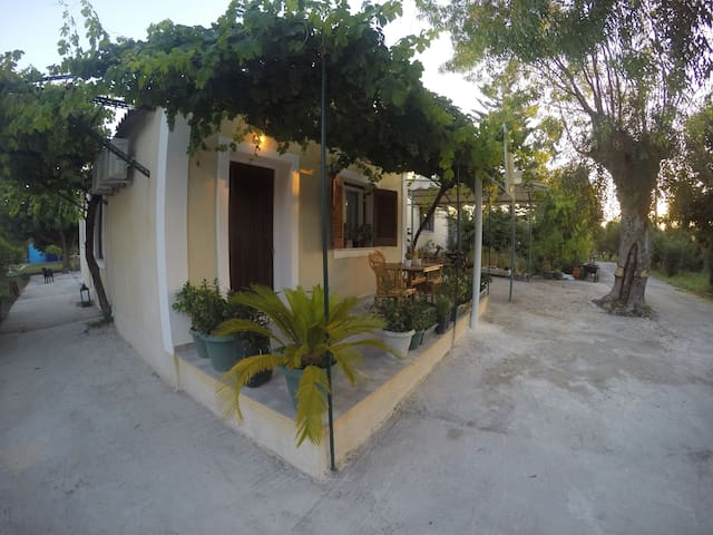 Pergola house (room #1)