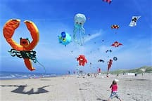 Bring your own (maybe smaller) kite and join your mates at our widest beach of Western - Europe