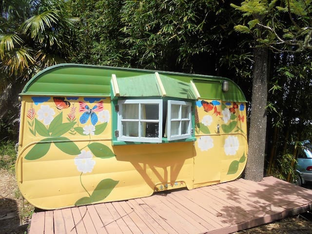 Bamboo Caravan - Kohukohu - Inny